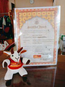 Gratis sertifikat dan boneka