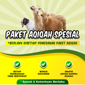 banner iklan promo paket aqiqah spesial dari Padi Aqiqah